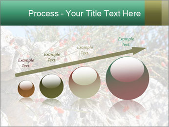 0000084035 PowerPoint Template - Slide 87