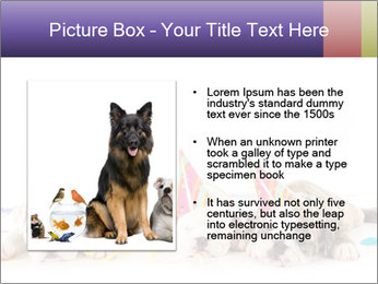 0000084036 PowerPoint Template - Slide 13