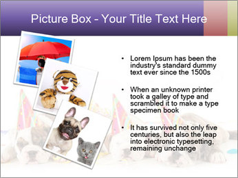 0000084036 PowerPoint Template - Slide 17