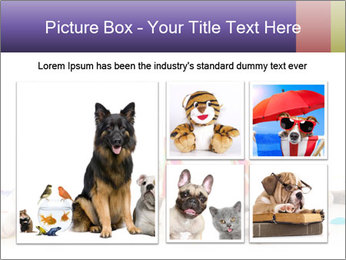 0000084036 PowerPoint Template - Slide 19