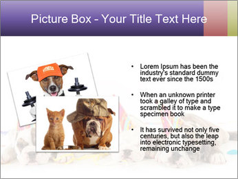 0000084036 PowerPoint Template - Slide 20