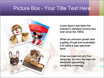 0000084036 PowerPoint Template - Slide 23