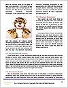 0000084036 Word Template - Page 4
