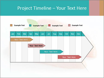 0000084043 PowerPoint Template - Slide 25