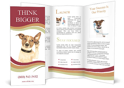 0000084046 Brochure Templates