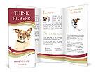 0000084046 Brochure Template