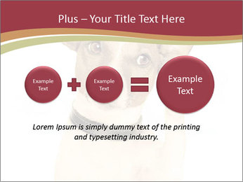 0000084046 PowerPoint Templates - Slide 75