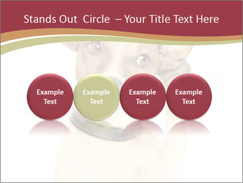0000084046 PowerPoint Templates - Slide 76