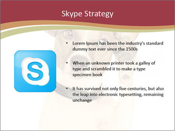 0000084046 PowerPoint Templates - Slide 8