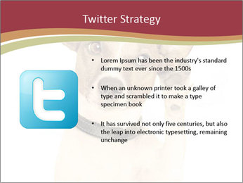 0000084046 PowerPoint Templates - Slide 9