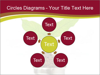 0000084051 PowerPoint Templates - Slide 78