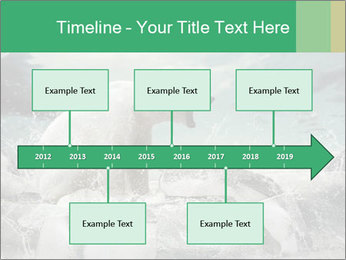 0000084059 PowerPoint Template - Slide 28