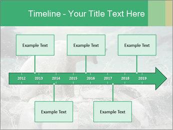 0000084059 PowerPoint Templates - Slide 28