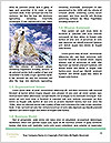 0000084059 Word Templates - Page 4