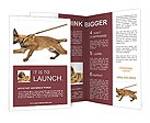 0000084062 Brochure Template