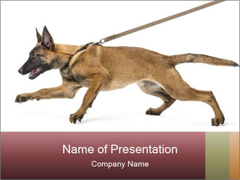 0000084062 PowerPoint Template - Slide 1