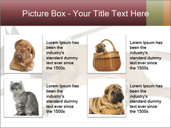 0000084062 PowerPoint Template - Slide 14