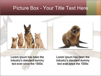 0000084062 PowerPoint Template - Slide 18