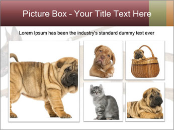 0000084062 PowerPoint Template - Slide 19