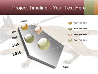 0000084062 PowerPoint Template - Slide 26
