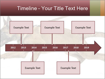 0000084062 PowerPoint Template - Slide 28