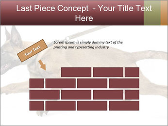 0000084062 PowerPoint Template - Slide 46