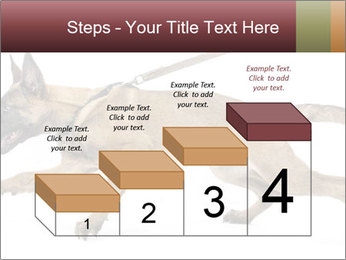 0000084062 PowerPoint Template - Slide 64