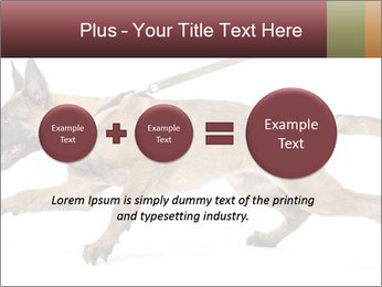 0000084062 PowerPoint Template - Slide 75