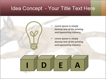 0000084062 PowerPoint Template - Slide 80