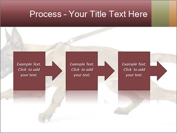 0000084062 PowerPoint Template - Slide 88