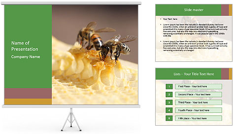 0000084069 PowerPoint Template
