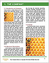 0000084069 Word Templates - Page 3