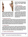 0000084070 Word Templates - Page 4