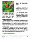 0000084071 Word Templates - Page 4