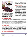 0000084072 Word Template - Page 4