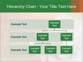 0000084079 PowerPoint Templates - Slide 67