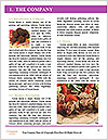 0000084080 Word Template - Page 3