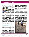0000084084 Word Template - Page 3
