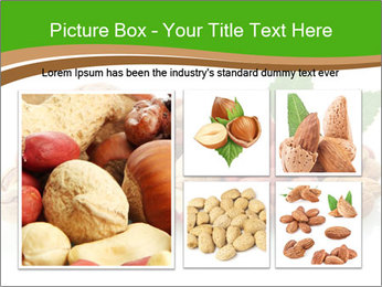 0000084094 PowerPoint Template - Slide 19