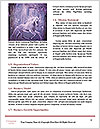 0000084102 Word Template - Page 4