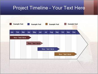 0000084113 PowerPoint Templates - Slide 25