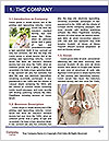 0000084113 Word Template - Page 3