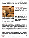 0000084114 Word Template - Page 4