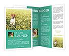 0000084119 Brochure Templates