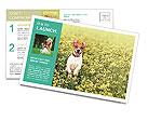 0000084119 Postcard Template