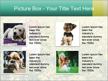 0000084119 PowerPoint Template - Slide 14