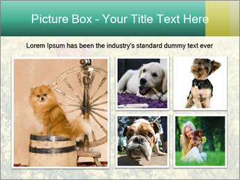 0000084119 PowerPoint Template - Slide 19