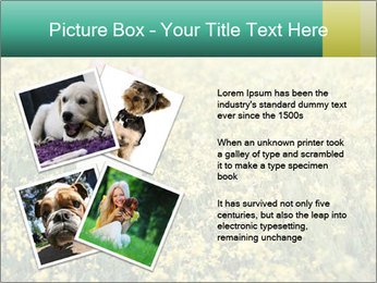 0000084119 PowerPoint Template - Slide 23