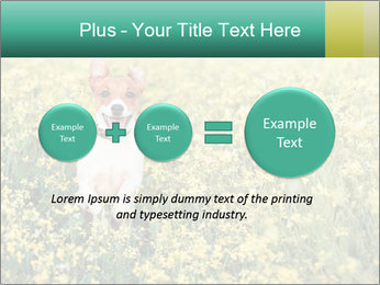 0000084119 PowerPoint Template - Slide 75