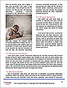 0000084120 Word Templates - Page 4